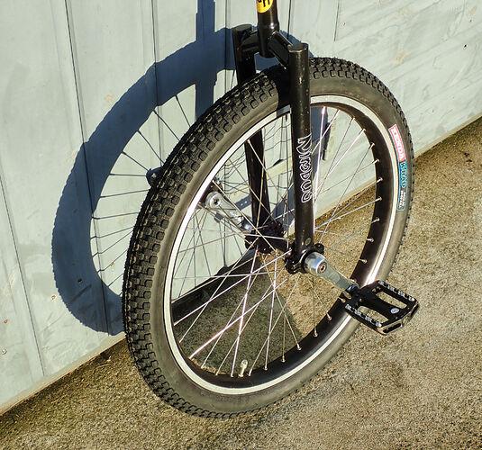 20210105-unicycle-1050410