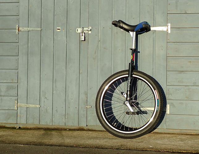 20210105-unicycle-1050407
